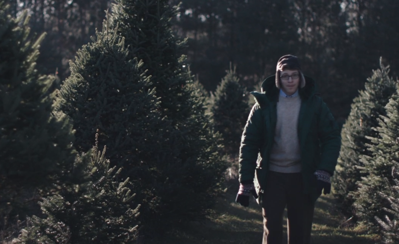 "Watch ""Joe Pera Helps You Find the Perfect Christmas Tree"" on Adult Swim"