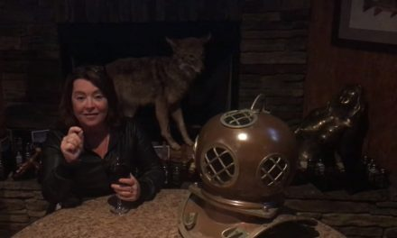 "Kathleen Madigan announces 30-city ""Boxed Wine & Bigfoot"" theater tour to kick off 2018"